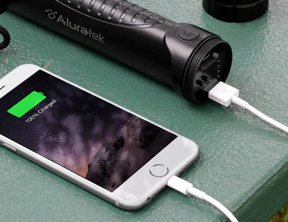 Rapid On-The-Go Charging